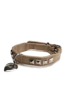 discord Yohji Yamamoto HUNTER Dog collar